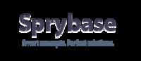 A great web designer: Sprybase, Iasi, Romania