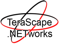 A great web designer: TeraScape Networks, Shanghai, China