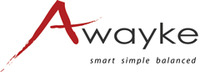 A great web designer: Awayke, New Haven, CT