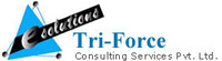 A great web designer: Tri-Force Consultancy Services Pvt Ltd, Ahmedabad, India logo