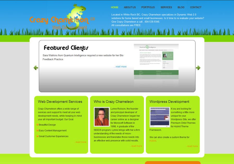A great web design by A Crazy Chameleon , Vancouver, Canada: