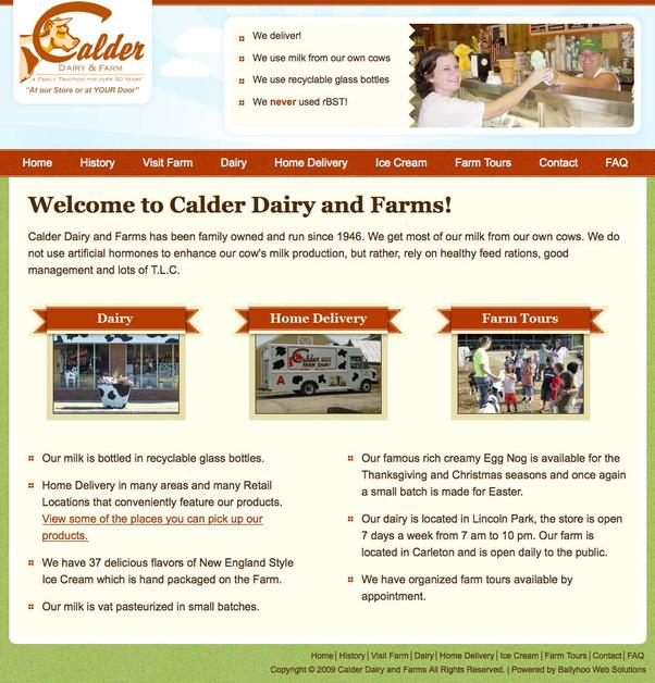 A great web design by Ballyhoo Web Solutions, Detroit, MI: