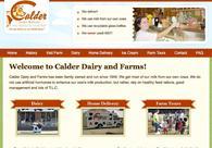 A great web design by Ballyhoo Web Solutions, Detroit, MI: