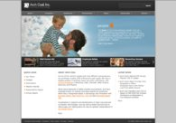A great web design by Falk Harrison, St Louis, MO: