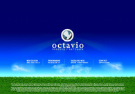 A great web design by Octavio Hosting - Software, Bucharest, Romania: