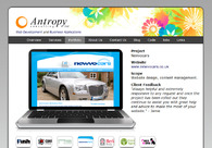 A great web design by Antropy Consulting: