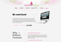 A great web design by Brilliant Fantastic, Toledo, OH: