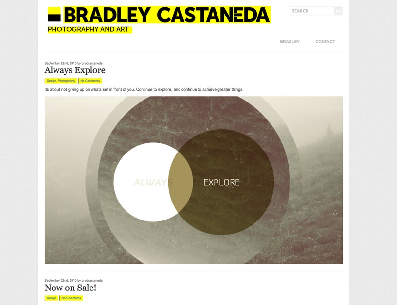 A great web design by Bradley Castaneda, Seattle, WA: