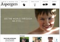 A great web design by Chaoseeker, Los Angeles, CA: