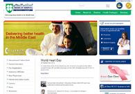 A great web design by WSI Net Power, Dubai, United Arab Emirates: