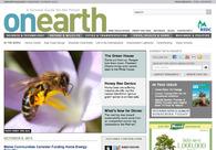 A great web design by Hazan+Company, New York, NY: