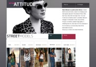 A great web design by Synthview freelance graphic designer, Paris, France: