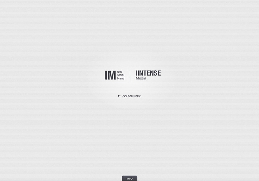A great web design by iintense web design, Tampa, FL: