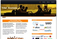 A great web design by New Channel Marketing, San Francisco, CA: