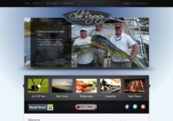 A great web design by NextMedia 360, Chicago, IL: