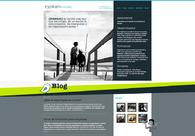 A great web design by Ryokan Consulting SL, Alicante, Spain: