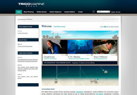 A great web design by Type&Image, Baton Rouge, LA: