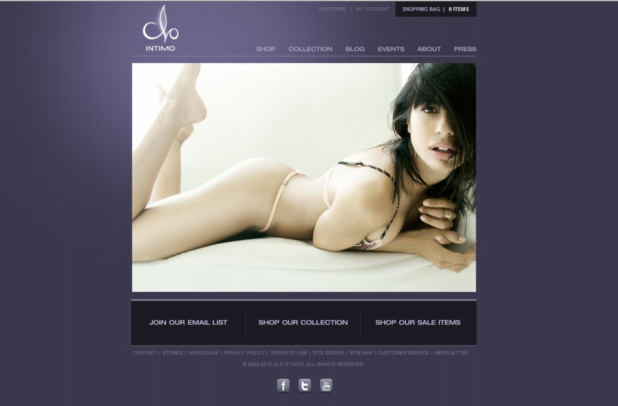 A great web design by SizzleFactor, New York, NY: