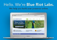 A great web design by Blue Riot Labs, New York, NY: