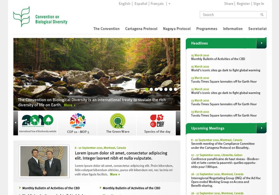 A great web design by 72dpi, New York, NY: