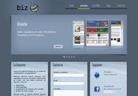 A great web design by Biz, Santa Fe, Argentina: