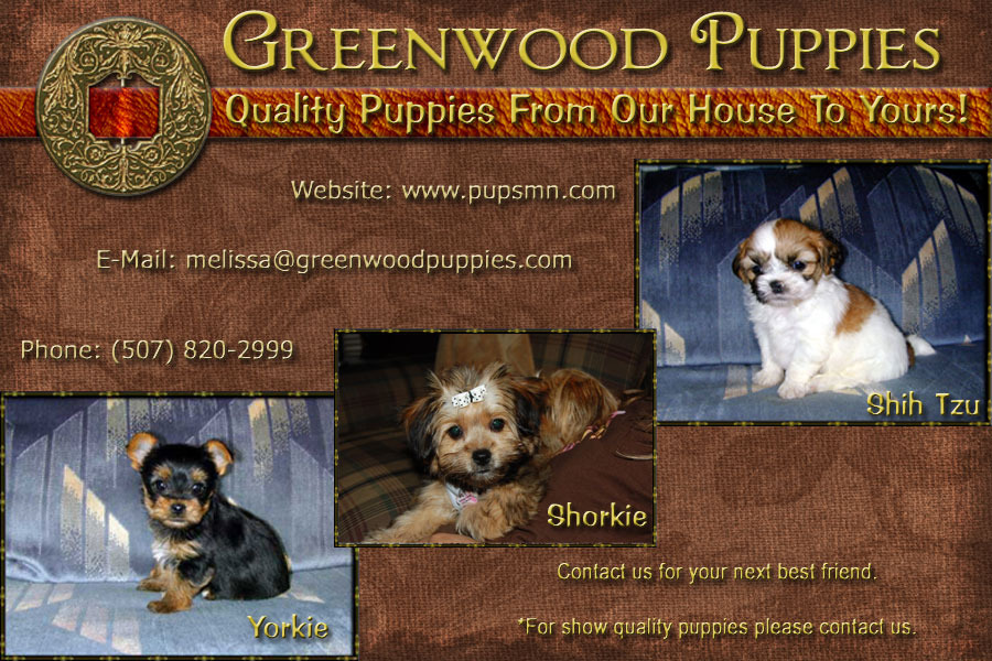 A great web design by Dakota Winds Graphics, Sioux Falls, SD: