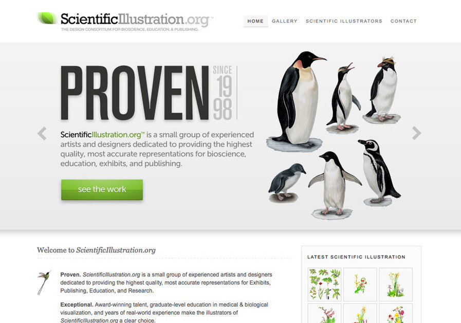 A great web design by ScientificIllustration.org, Detroit, MI: