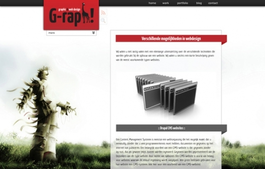A great web design by G-raph Graphic & Web Design, New York, NY: