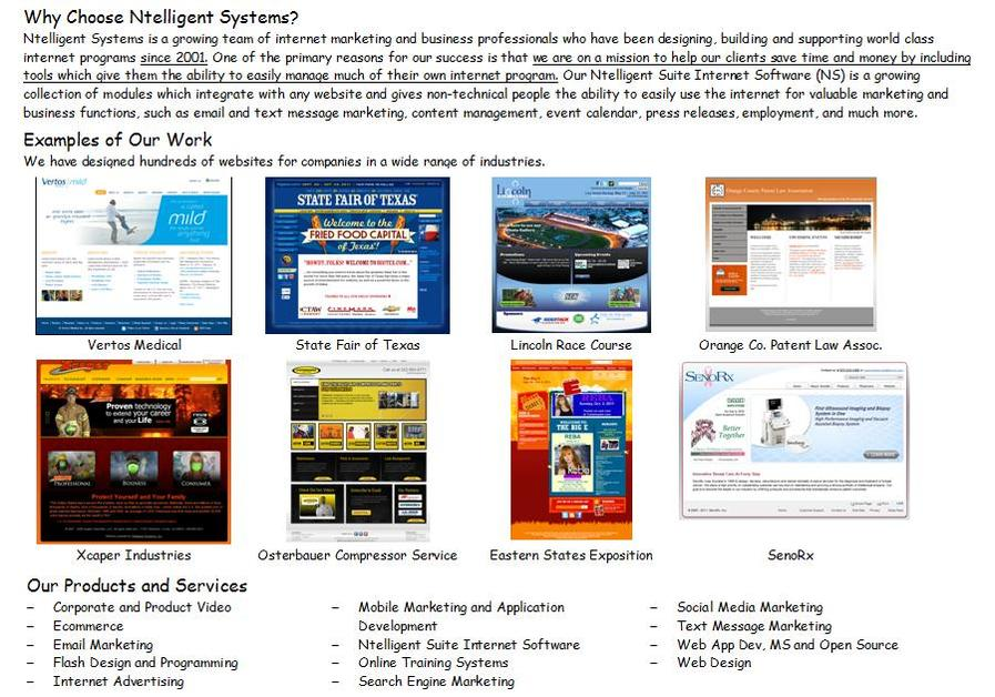 A great web design by Ntelligent Systems, Inc., Los Angeles, CA: