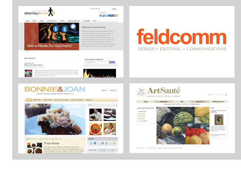 A great web design by Feldcomm, Chicago, IL: