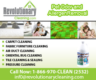 A great web design by Revolutionary Cleaning, Fort Lauderdale, FL: