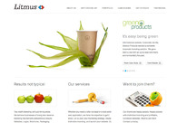 A great web design by Litmus, Ahmedabad, India:
