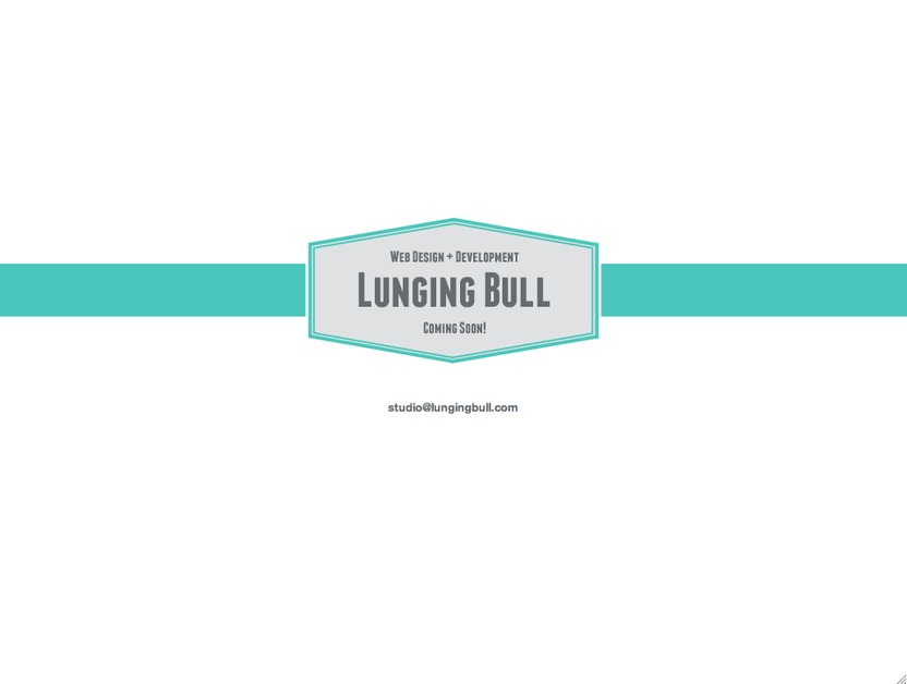 A great web design by Lunging Bull, Atlanta, GA: