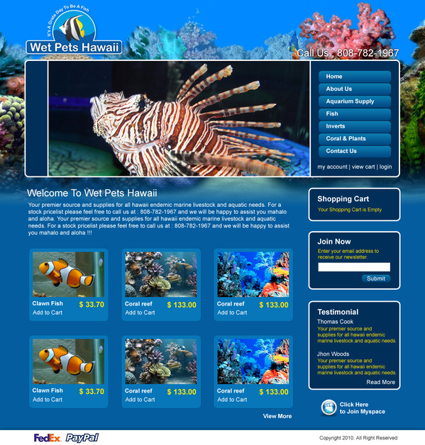 A great web design by World Web Guys, Dallas, TX: