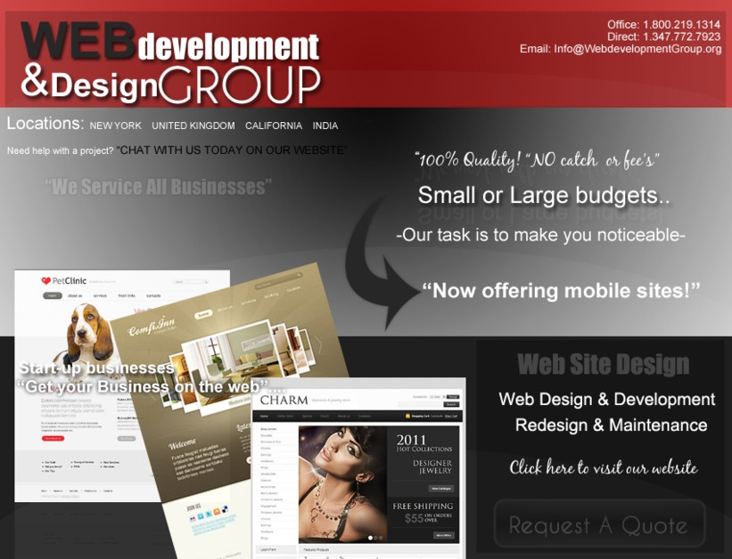 A great web design by Web Development Group - NYC, New York, NY: