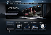 A great web design by Virtual Ruckus LLC, Washington DC, DC: