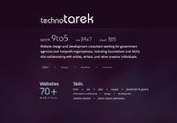 A great web design by technoTarek, Washington DC, DC: