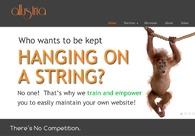 A great web design by allustria, Boston, MA:
