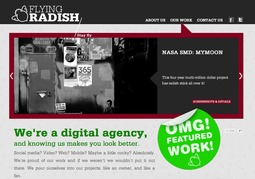 A great web design by Flying Radish, Houston, TX: