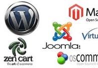 A great web design by CMS Development India, Denver, CO: