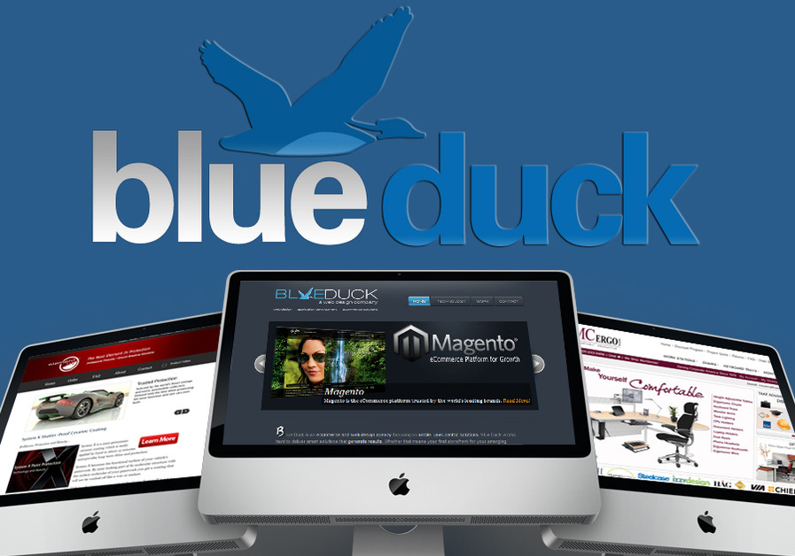 A great web design by Blue Duck, New York, NY: