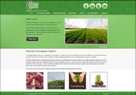 A great web design by Frontera Marketing Group, Quad Cities, IA: