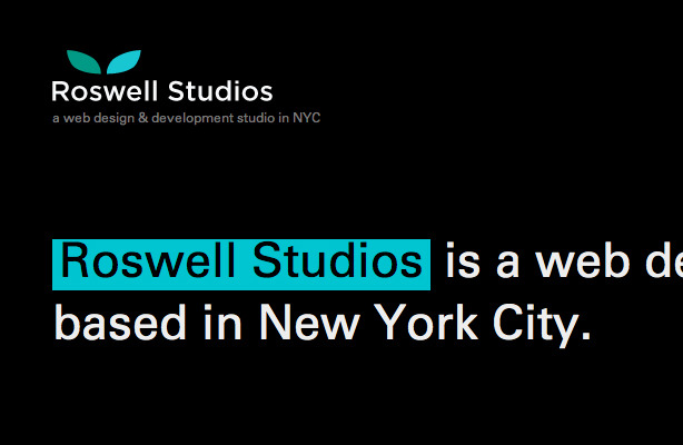 A great web design by Roswell Studios, New York, NY: