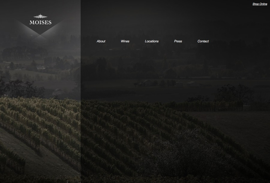 A great web design by Skuba Design Studio, New Orleans, LA: