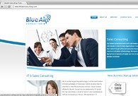 A great web design by Blue Air Consulting, LLC, Jacksonville, FL: