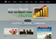 A great web design by Advanzweb.com, New York, NY: