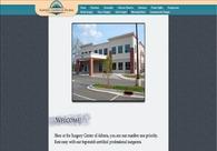 A great web design by WOObul, Atlanta, GA: