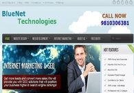 A great web design by BlueNet Technologies, New Delhi, India: