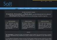 A great web design by Salt Technologies, Mumbai, India: