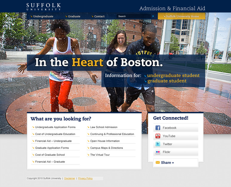 A great web design by BlueLuna, Boston, MA:
